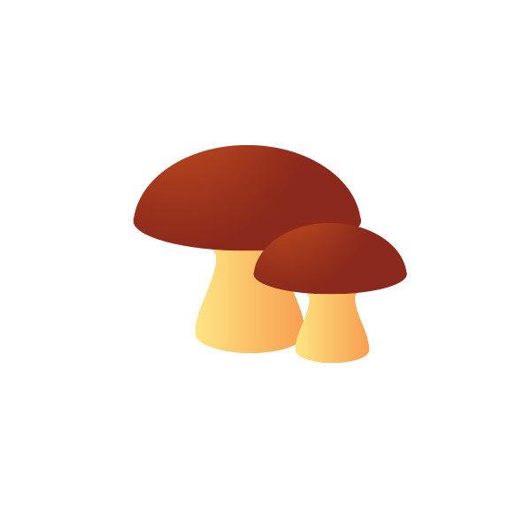 Bügelbild Pilze