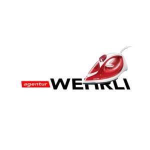 Logo de iron-on
