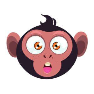 20248-monkey-7