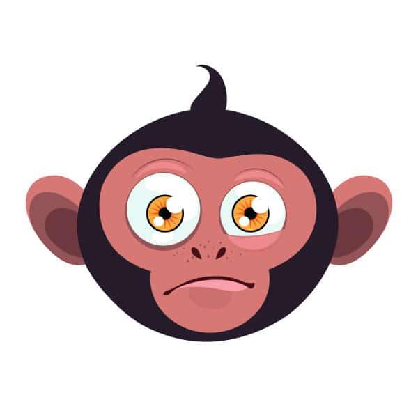 20249-monkey-8