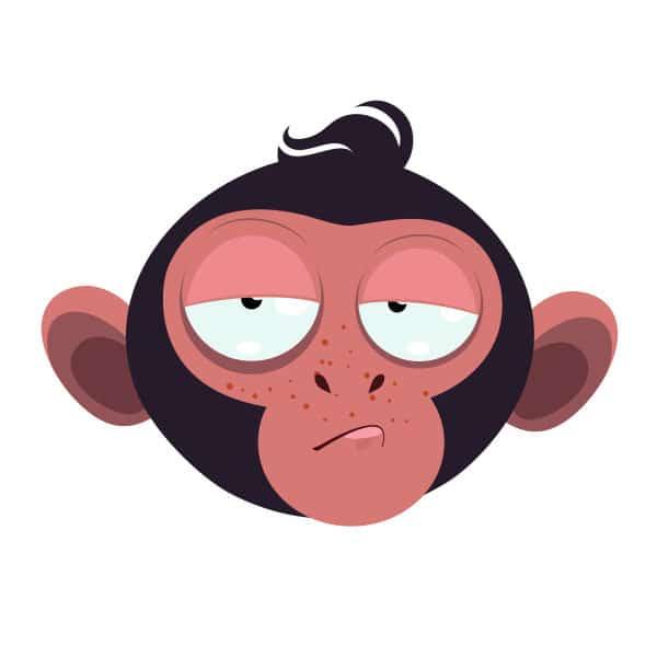 20250-monkey-9