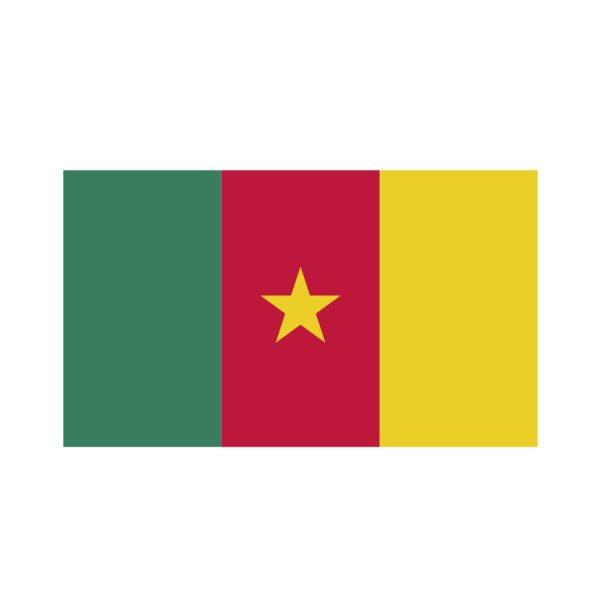 Bügelbild Kamerun Flagge