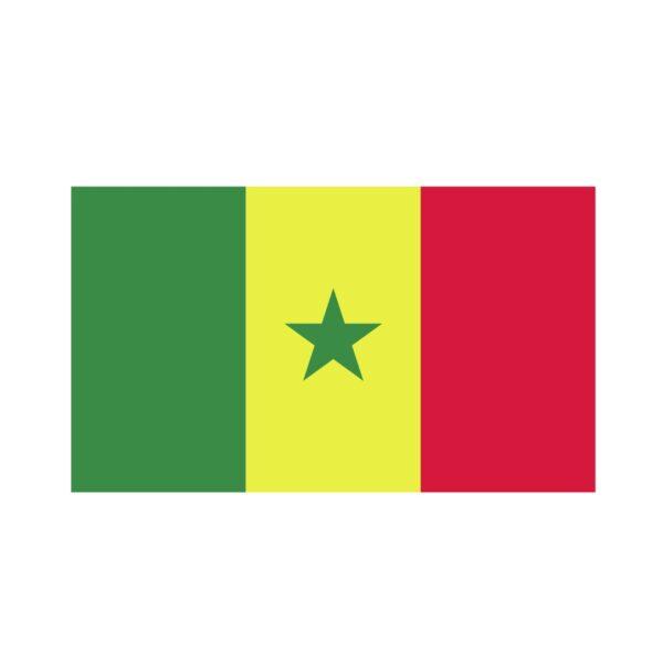 Bügelbild Senegal Flagge